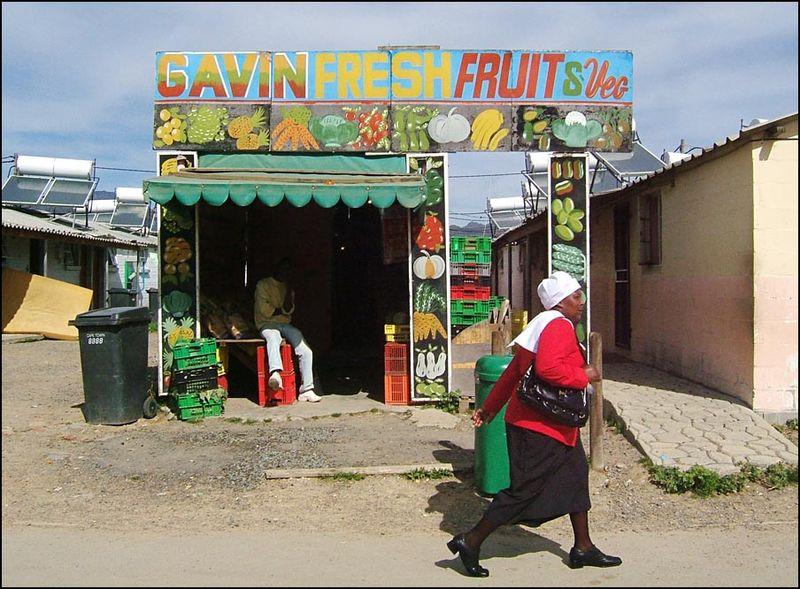 Gavin Fresh Fruit New