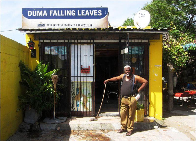 Dumas Falling Leaves Gugulethu 04