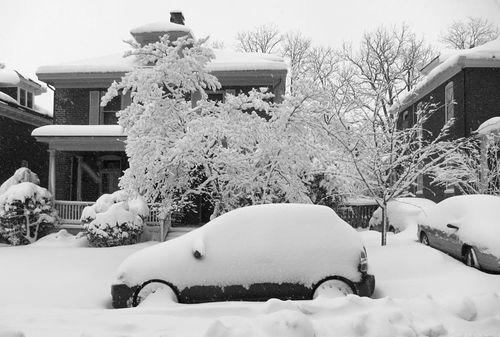 Charlottesville Snowstorm February 2010 15