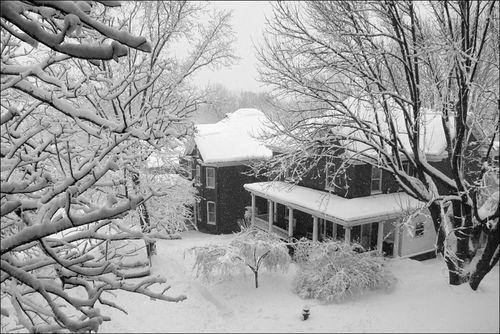 Charlottesville Snowstorm February 2010 16