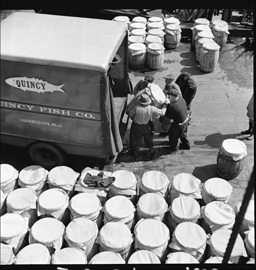 Gordon Parks New York New York Barrels of fish on the docks