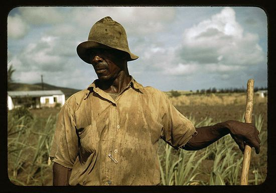 Delano Farm Security Administration borrower vicinity of Frederiksted St Croix Virgin Islands 1941