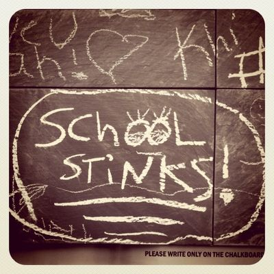 School Stinks Charlottesville Free Speech Wall