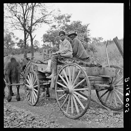 Marion Post Wolcott FSA Hauling coal up the hill picked up near mines to his home Chaplin West Virginia 1938-14