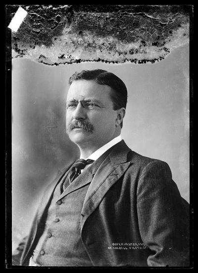 C M Bell T Roosevelt 1873 1916